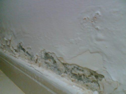 طرق حمايه الحوائط من الرطوبة