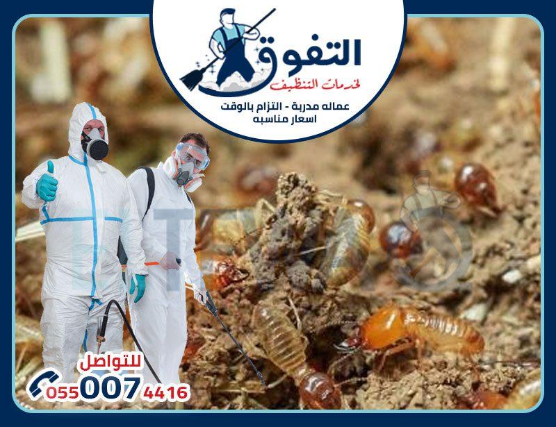 افضل شركات مكافحة النمل الابيض في الدمام